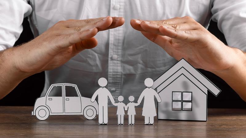 Civil & Domestic Protection